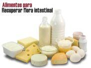 Alimentos para recuperar la flora intestinal