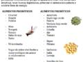 Cómo fortalecer la flora intestinal