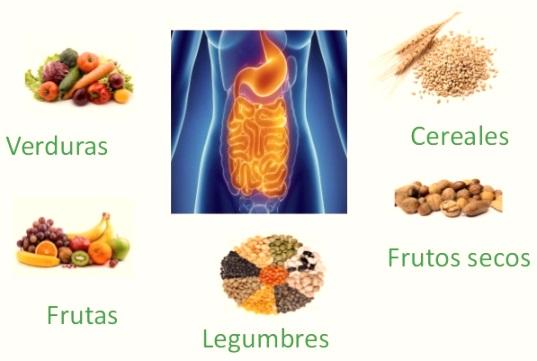 Cómo recuperar la flora intestinal