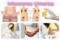 Vías de contagio de la infección urinaria