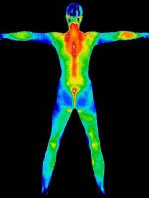 ¿Cuál es la temperatura normal en el cuerpo humano?